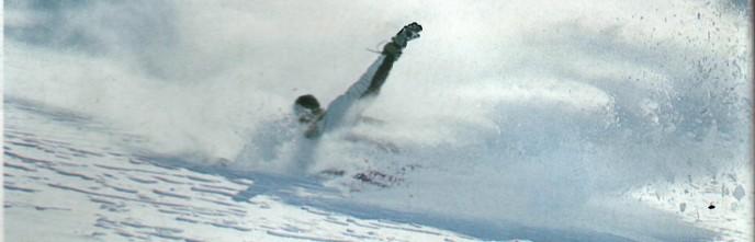 Snow laurent / Palmer