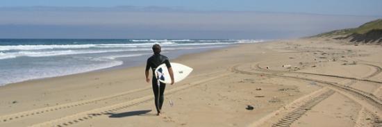 silver-landes-surf-camp