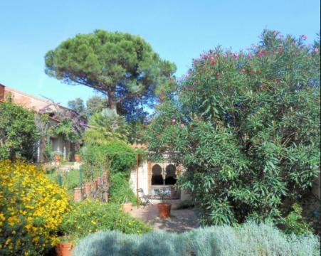 Jardin 6